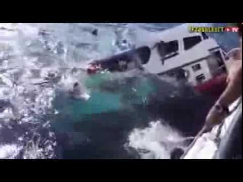 В Таиланде затонуло судно