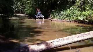 8. Honda Foreman 500 Power Steering in deep water