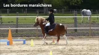 Video Les principaux dispositifs d'equifun MP3, 3GP, MP4, WEBM, AVI, FLV Mei 2017
