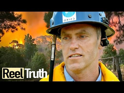 Inside The Wildfire: Episode 2 (Bushfires in Australia) | Full Documentary | Reel Truth