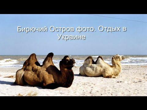 Бирючий Остров фото. Отдых в Украине