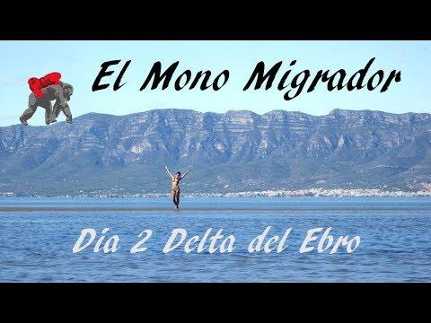 EL MONO MIGRADOR/ ESPAÑA DIA 2/ No nos queremos ir de este lugar!!!