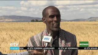 Oduu Biznasii Afaan Oromoo Jan,08/2020 |etv