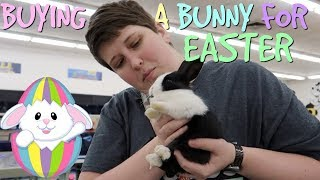 GETTING A NEW BUNNY FOR EASTER by Pickles12807