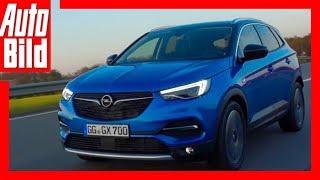 Opel Grandland X (2017) Fahrbericht/Review/Details by Auto Bild