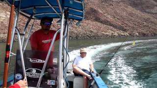 """We go to the """"Natural Sea-World"""" at Bahia de Los Angeles, where we go fishing, snorkeling, and searching for the famed whale..."""