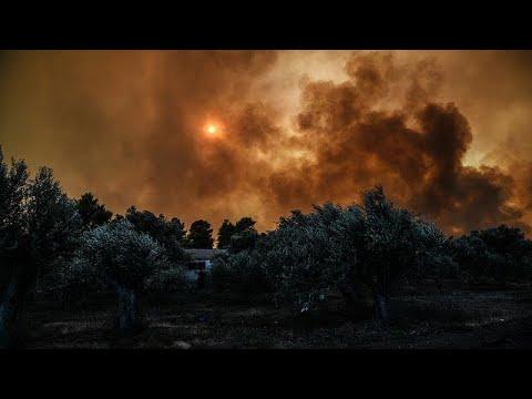 Εύβοια: Μάχη με τις φλόγες