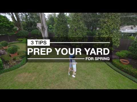 Lawn Care Prep: 3 Quick Tips for Spring