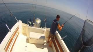 Video Pesca de pargo gigante   pescacintina MP3, 3GP, MP4, WEBM, AVI, FLV Desember 2017