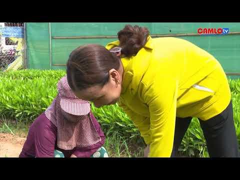 Hội Nông dân huyện triển khai công tác hội và phong trào nông dân  năm 2021