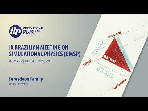 Statistical mechanics and computational physics in two dimension - Fereydoon Family