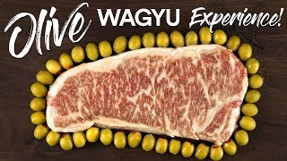 Video World's RAREST STEAK Olive Wagyu vs Japanese A5 WAGYU Beef! MP3, 3GP, MP4, WEBM, AVI, FLV Agustus 2019