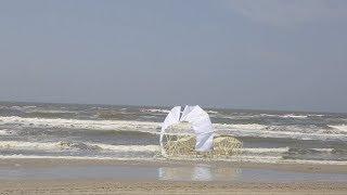 風の力で動くアート「ストランドビースト」が話題!生命体のように海岸を歩く姿に圧倒