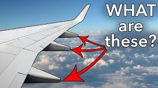 """Video """"Pods"""" under the wing? What are they? MP3, 3GP, MP4, WEBM, AVI, FLV Mei 2018"""