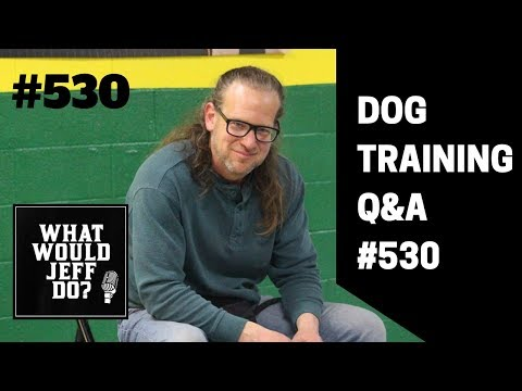 Getting a Second Dog | Stop Dog Humping | What Would Jeff Do? Dog Training Q & A #530