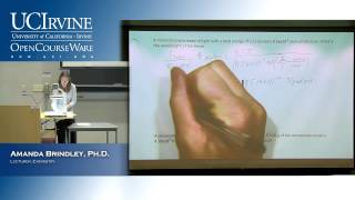 General Chemistry 1A. Lecture 23. Final Exam Review.