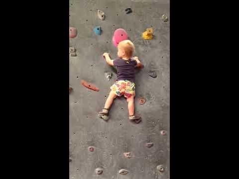Ua bimba di 19 mesi si arrampica su una parete