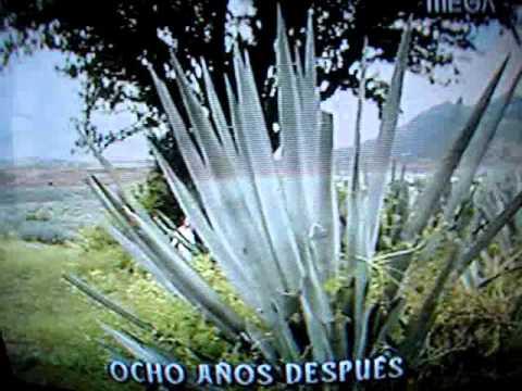 Telenovela Destilando Amor, FIN,  MEGA (Chile)
