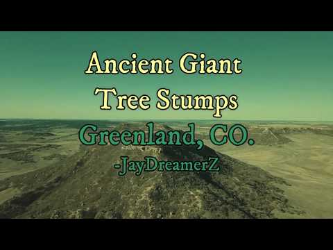 On location: Greenland, CO.  Drone footage of possible Ancient Giant Tree Stumps.