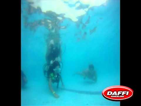 Daffi camps Windsurf 2011