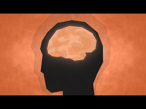 Top 10 Facts – Psychology