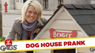 Infinite Dogs Escape Empty Doghouse - Throwback Thursday, Just for laughs, Just for laughs gags, Just for laughs 2015