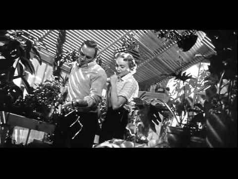 Invasion of the Body Snatchers Pod Scene 1956