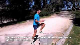 Subida a banco con elevación de rodilla contraria