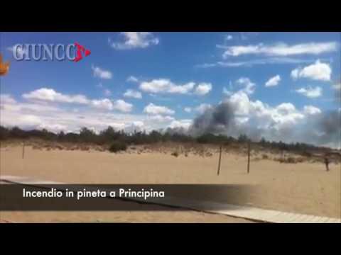 Incendio in pineta: il fumo nero si vede dalla spiaggia