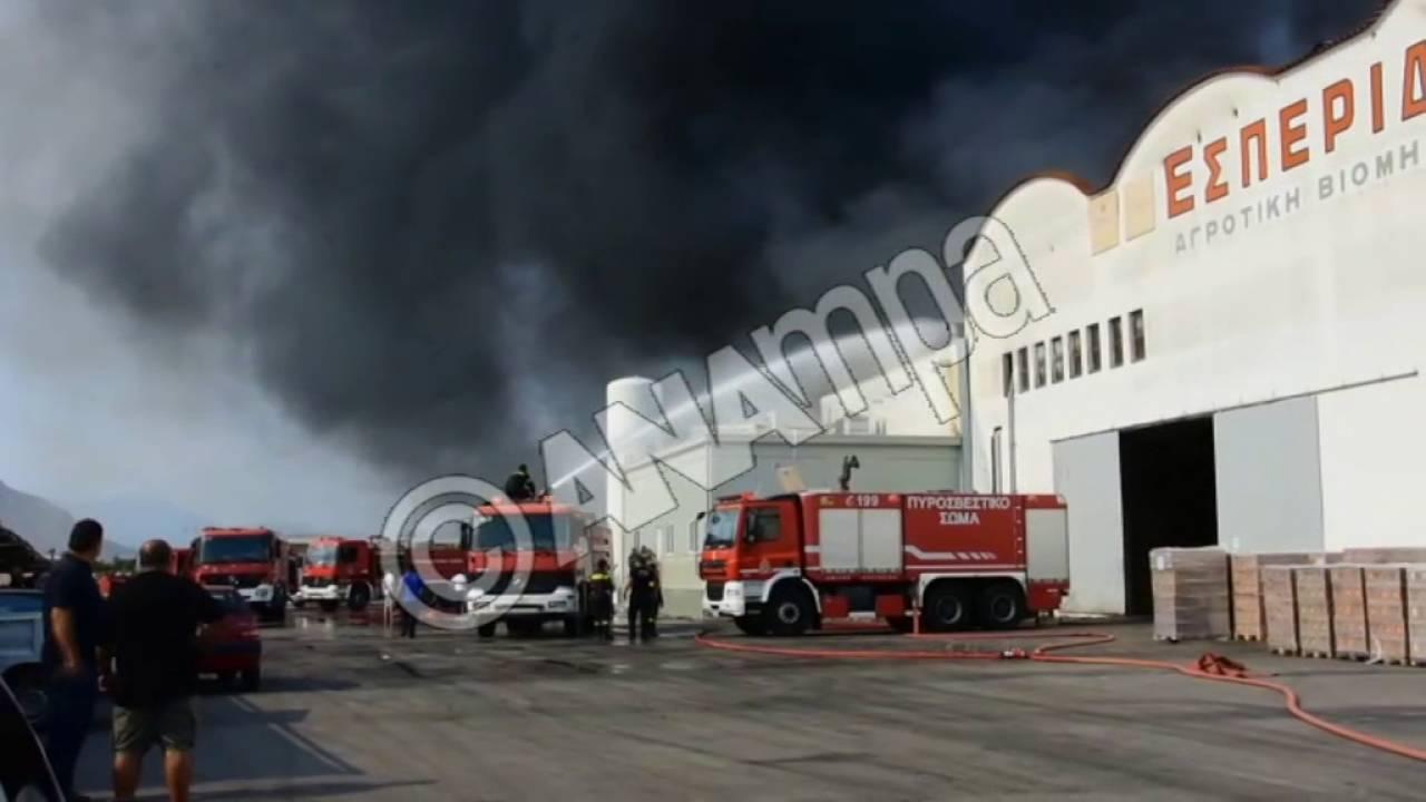 Μεγάλη πυρκαγιά εκδηλώθηκε στο εργοστάσιο Εσπερίδες στη Νέα Κίο