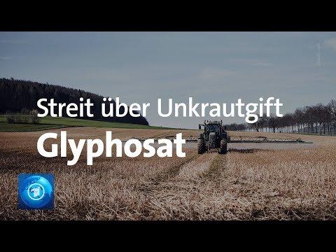 Glyphosat-Ausstieg: Streit über Unkrautvernichter