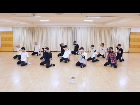 SEVENTEEN - 울고 싶지 않아 (Don't Wanna Cry) Dance Practice (Mirrored)