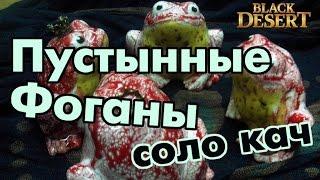 Black Desert (RU) - Пустынные жабы водяные Валенсия (спот для соло) Заработок серебра / Топ прокачка