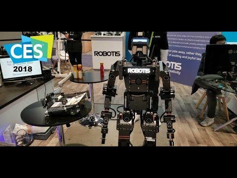 Robotics at CES 2018 The weird and fun robots (видео)
