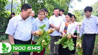 Nông nghiệp | Cán bộ quản lý hợp tác xã có trình độ chuyên môn còn thấp