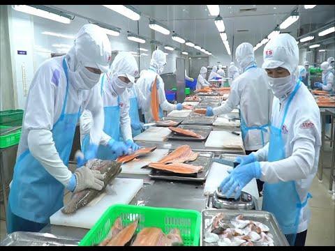 Tận dụng cơ hội từ các hiệp định thương mại tự do: Đưa Thủy sản Việt Nam vươn tầm cao mới