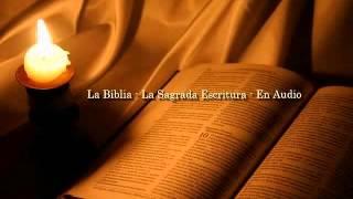 La Biblia Católica En Audio 11 Evangelio Según San Marcos 1 2 Y 3