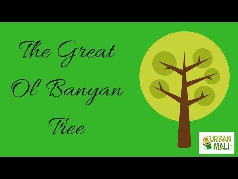 Video The Great Ol Banyan Tree - Urbanmali.com download in MP3, 3GP, MP4, WEBM, AVI, FLV January 2017