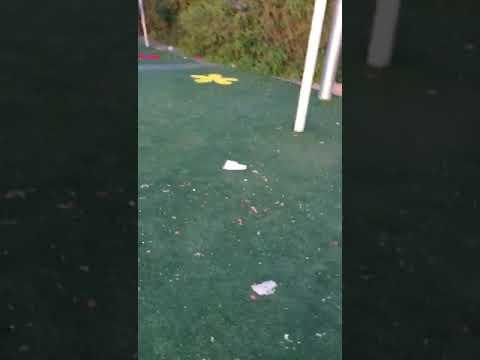 ילדי דליה אמורים לשהות בגן ציבורי נקי