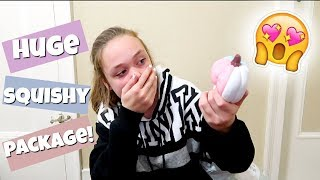 HUGE LICENSED SQUISHY PACKAGE! SUPER SLOW RISING SQUISHIES!
