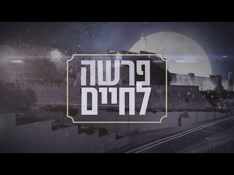 דרשה לפרשת ראה הרב יהודה ליפש