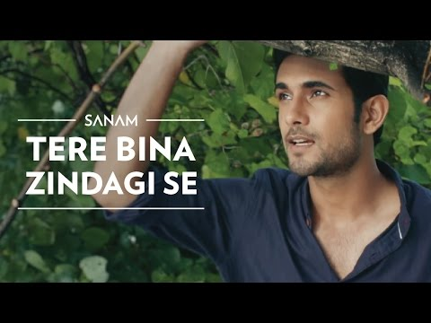 Video Tere Bina Zindagi Se | Sanam download in MP3, 3GP, MP4, WEBM, AVI, FLV January 2017