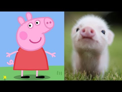 Peppa Pig Characters In Real Life Peppa George Zoe Kylie Danny Emily Candy Suzy Rebecca Freddy