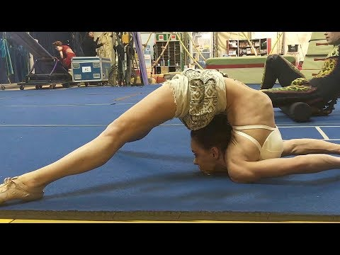 Meet the Artists! Behind The Scenes At The Cirque du Soleil AMALUNA Show
