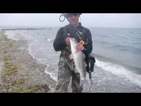 Surf Fishing for Stripers and Blues – Rhode Island, May 2013