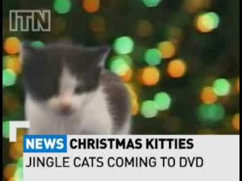 Pussy Cats singing 'Jingle Bells' Video