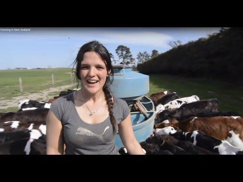 Landwirtschaft in Neuseeland - ein  Überblick