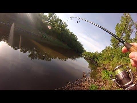 как мы ведем себя на рыбалке видео