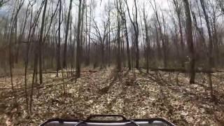 9. 2008 Honda Foreman 500 ride in the woods where I run my Beagles.