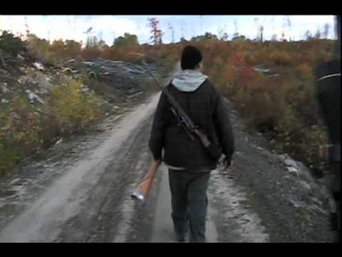 Orignal: Chasseurs autochtones Atikamekws à l'affût !